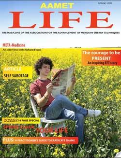 AAMET Spring magazine 2011