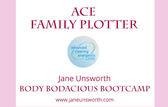 ACE Family Plotter for Body Bodacious Bootcamp with Jane Unsworth